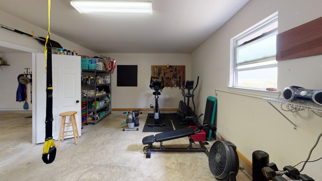 Workout Room or Man Cave